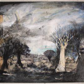 Namakwa Quiver Trees