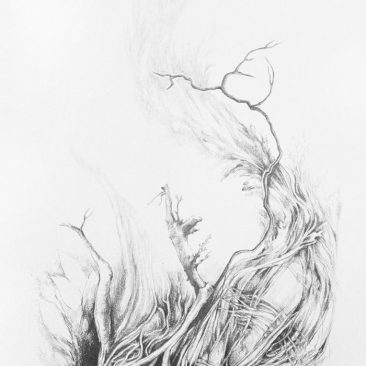 Pencil drawing representing growth and the natural elements
